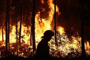 Wildfires in Portugal: Forest fire at Mondim de Basto