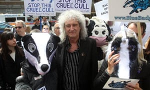 Brian May badger protest
