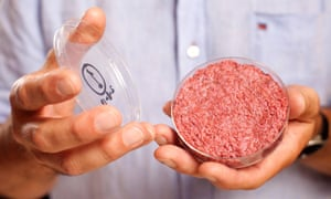 Professor Mark Post of Maastricht University holds the burger made from cultured beef developed by him. Post explained in London that: 'The muscle stem cells, taken by harmless biopsy from living cows, are fed and nurtured so they multiply to create muscle tissue. The cells grow into strands, and 20,000 of them get combined to create one burger.'