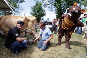 IndyCar Series driver Alex Tagliani of Canada (in a beaver costume) looks on as fellow driver Scott Dixon, of New Zealand (L) milks a cow with fair worker Jeff Jehn (C) at the Indiana State Fair in Indianapolis as part of the payoff of a charity fund-raising bet. Photograph: Michael Conroy/AP