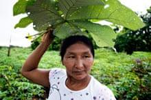 Baniwa woman