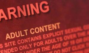 Internet Porn Site 114
