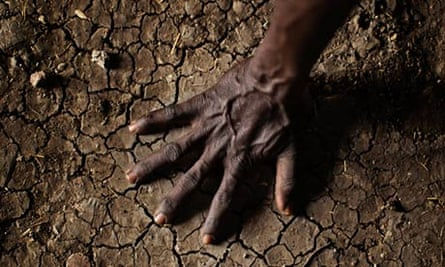 Warming worry over soil microbes