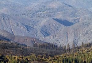 Week in wildlife: California Wildfires, Yosemite National Park, America - 09 Sep 2013