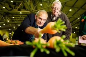 Nat Veg Champs: Judging at the National Vegetable Championships