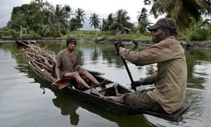 Niger delta oil spill: collecting wood