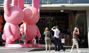 Brisbane festival: Bunnies