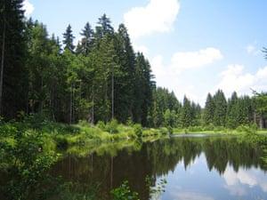 Alternative Germany: titisee lakeside resort