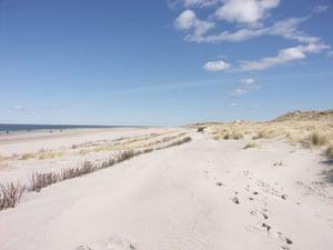 Alternative Germany: amrum beach