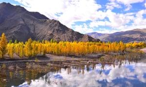 Amazing autumn scenery along the Lhasa river near Lhasa, the capital of southwest China's Tibet Autonomous Region.