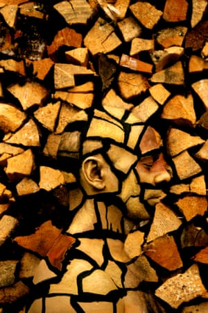 What initially looks like a pile of chopped logs is an example of world champion body-painter  Johannes Stötter's work. Much of Stotter's work involves rendering his models invisible by merging them into the background scenery.