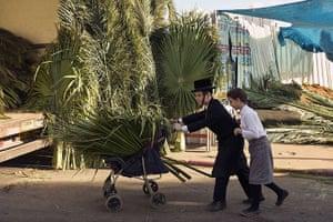 Sukkot preparations: Ultra-Orthodox Jewish children carry palm branches in Bnei Brak