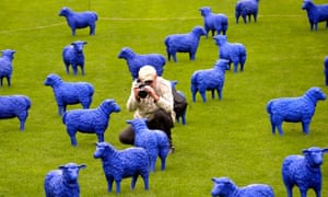 A visitor takes photos of the art project 'Blue Peace Flock' by artists Rainer Bonk and Bertamaria Reetz in Hamburg-Wilhelmsburg, Germany.
