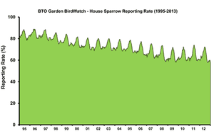 House sparrows graph
