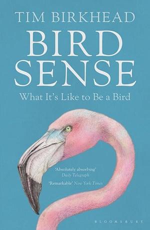 Winton Prize: Bird Sense by Tim Birkhead, published by Bloomsbury