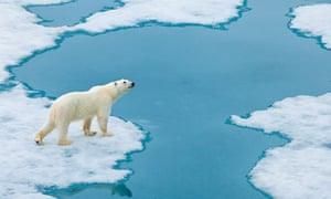 IPCC Arctic Sea Ice