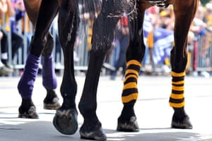 AFL Parade: Police horses wearing Hawthorn and Fremantle socks walk down St. Kilda Road