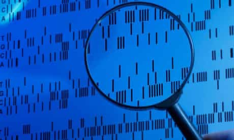 DNA Sequence Examined Under a Magnifying Glass in a Laboratory