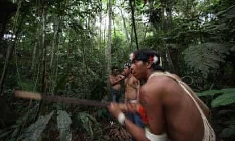MDG : Yasuni national park