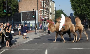 Why did the camel cross the road? To attend the British Military Tournament photocall at Earls Court of course. The Tournament will this year be celebrating legendary events and heroes in British history at  Earls Court, London, in December.