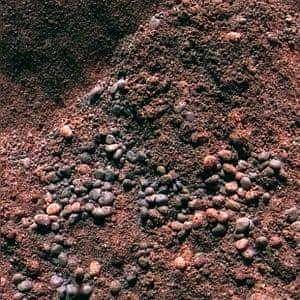 A closeup of the ground at Serpent Drift.