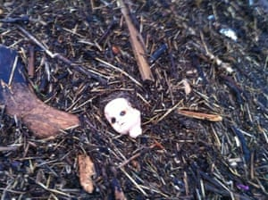 'Creepiest ever flotsam,' asks folderdave, of this post-storm discovery on South Beach, Troon, South Ayrshire