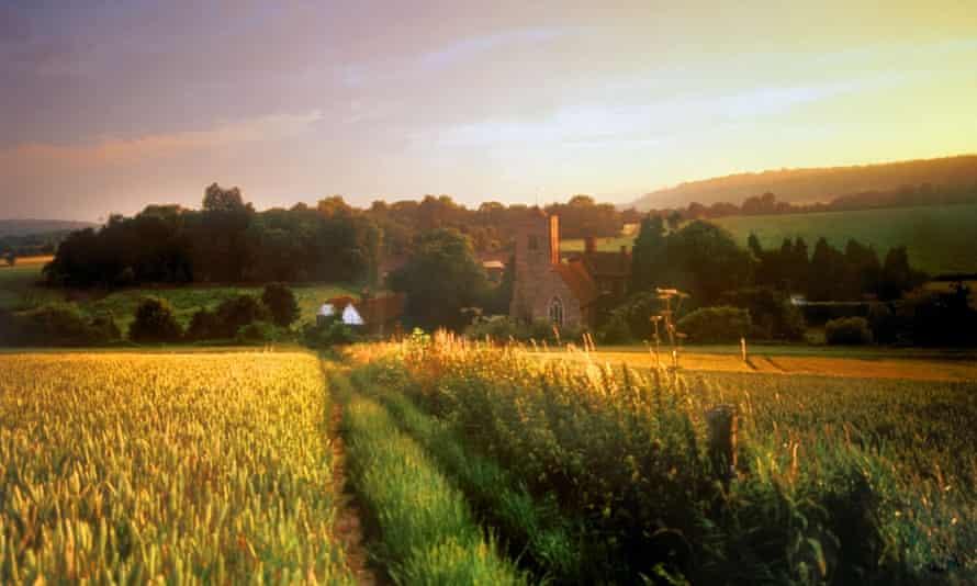 Walking in the Kent countryside: Charles Darwin was a fan. Photograph: david martyn hughes/Alamy