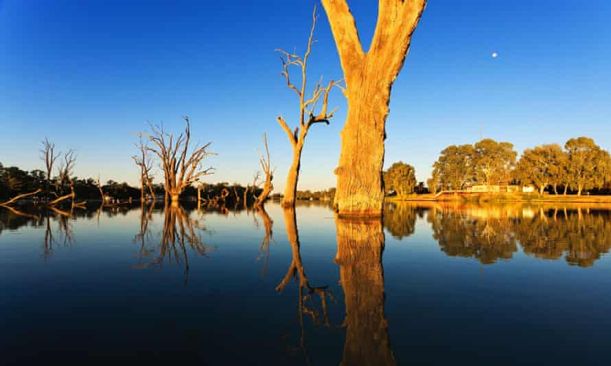 Murray Darling Basin Water Sell Off What You Need To Know Environment The Guardian