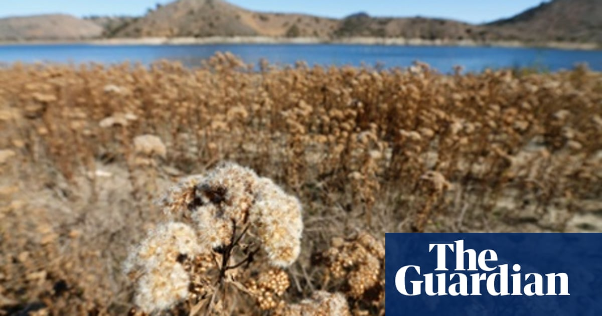 Google Adobe And Ebay Innovate To Save Water In Drought Hit California Guardian Sustainable Business The Guardian