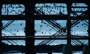 A murmuration of starlings come in to roost on Victorian seaside pier at Aberystwyth, Wales