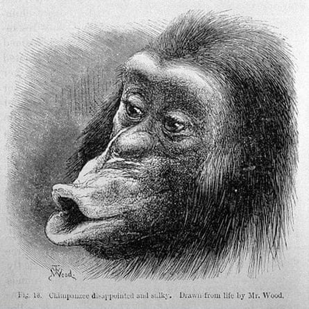 The expression of the emotions in man and animals - Wellcome Library