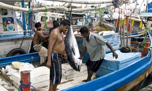 Cities: Galle 4, boat 2009