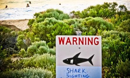Shark sighting sign near Prevelly Beach in WA
