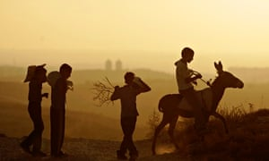 youth agriculture