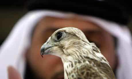An Emirati man holds a falcon in Abu Dhabi