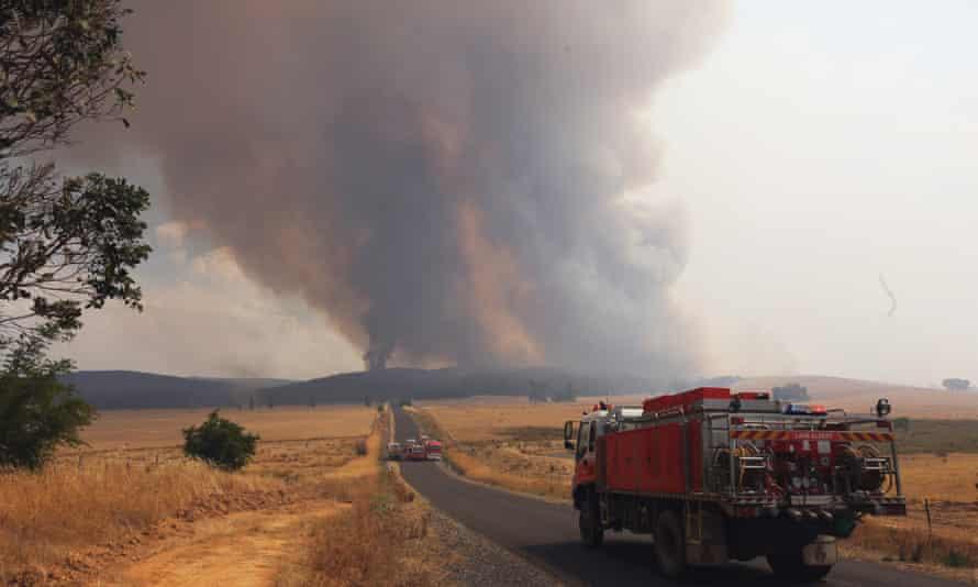 bushfire new south wales wagga