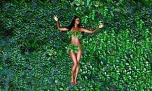 Black Hollywood American Beauty