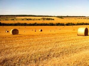 Quintessentially British scene in east Kent