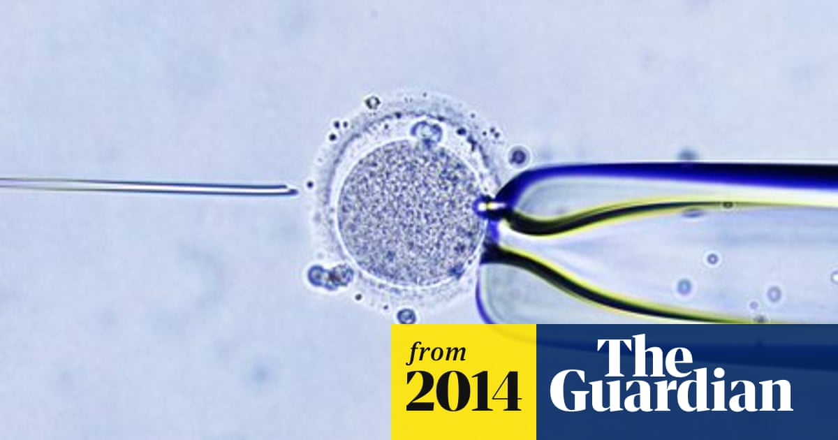 IVF babies have greater risk of complications, study finds