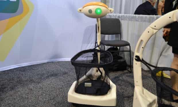 Budgee robot