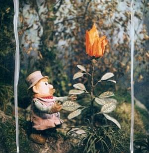 MR POGLE AND THE MAGIC PLANT