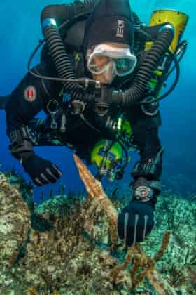 A diver holds a bronze spear at the site of the Antikythera wreck.