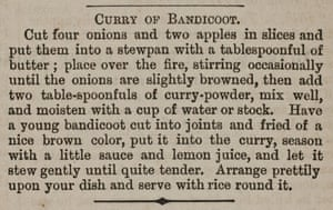 An 1880 recipe for bandicoot curry from Curry of The Queenslander.