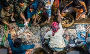 10.00 - Saumalya Ghosh - Fish Market