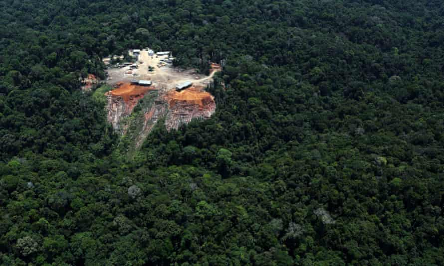 Odani sawmill, located in Placas, Par  , linked with logging and processing of illegal timber.