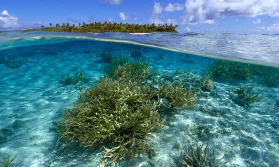 Ailuk atoll, Marshall Islands.