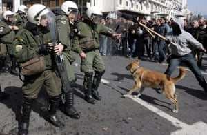 A file photo dated 24 February 2010 shows Loukanikos barking at riot policemen during clashes that broke out in Athens during a general strike against austerity measures.