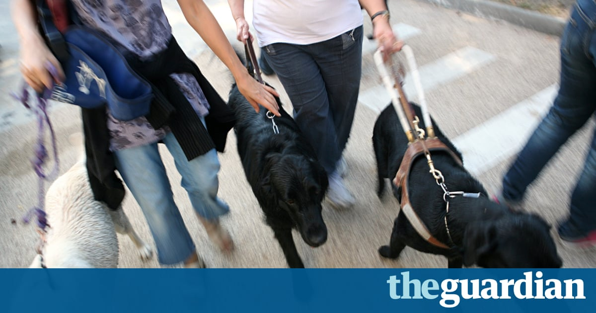 Guide Dog Laws Are Being Flouted And Its Ruining My Life