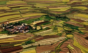 Sustainable agriculture (aerial), Betsileo terrace fields, Central Madagascar