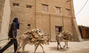 Donkeys transport wood along a Timbuktu street.